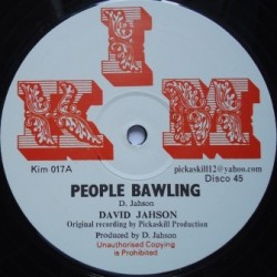 David Jahson - Zion Train 12''