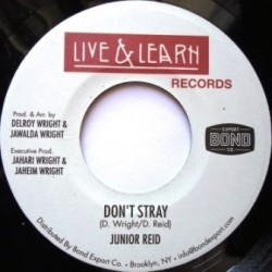 Junior Reid - Don't Stray 7''