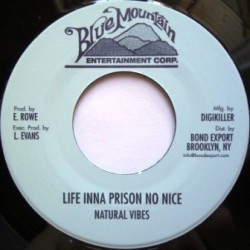 Natural Vibes - Life Inna...
