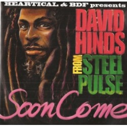 David 'Steel Pulse' Hinds -...