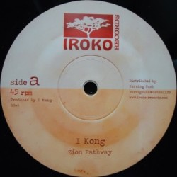 I Kong - Zion Pathway 12''