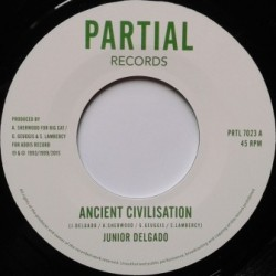 Junior Delgado - Ancient...