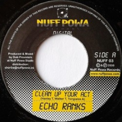 Echo Ranks - Clean up your...