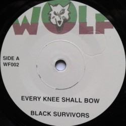 Black Survivors - Every...