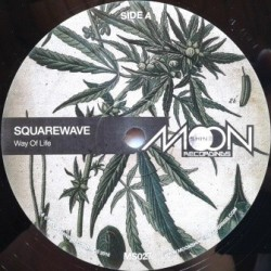 Squarewave - Way Of Life 12''