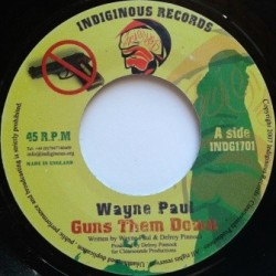 Wayne Paul - Guns Them Down...