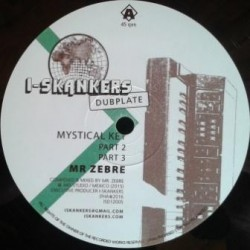 Mr Zebre - Mystical Key /...