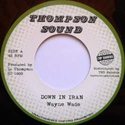 Wayne Wade - Down in Iran 7''