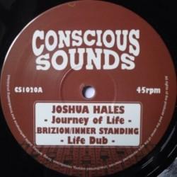 Joshua Hales - Journey Of...
