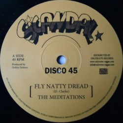 Meditations - Fly Natty...