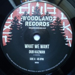Dub Kazman - What we Want 7""
