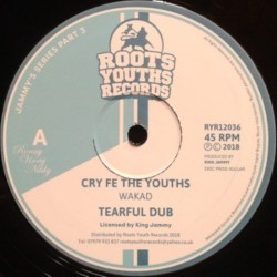 Wakad - Cry Fe The Youths 12""