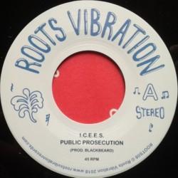 I.C.E.E.S. - Public...