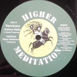 "Joshua Hales - Sanctuary 12"""