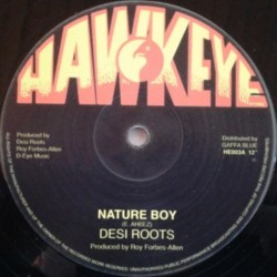 Desi Roots - Nature Boy 12""