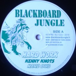 Kenny Knots - Hard Work /...