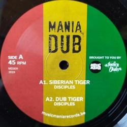 """Disciples - Siberian Tiger 10"""""""