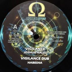 """Joshua Hales - Vigilance 12"""""""