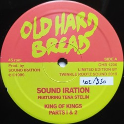 Sound Iration Ft. Tena...