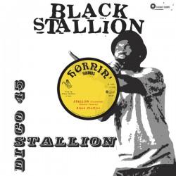 "Black Stallion - Stallion 12"""