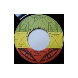 Wailers - Arabs Oil Weapon 7''